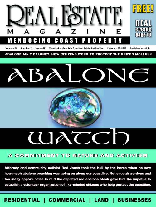 Abalone Watch Cover